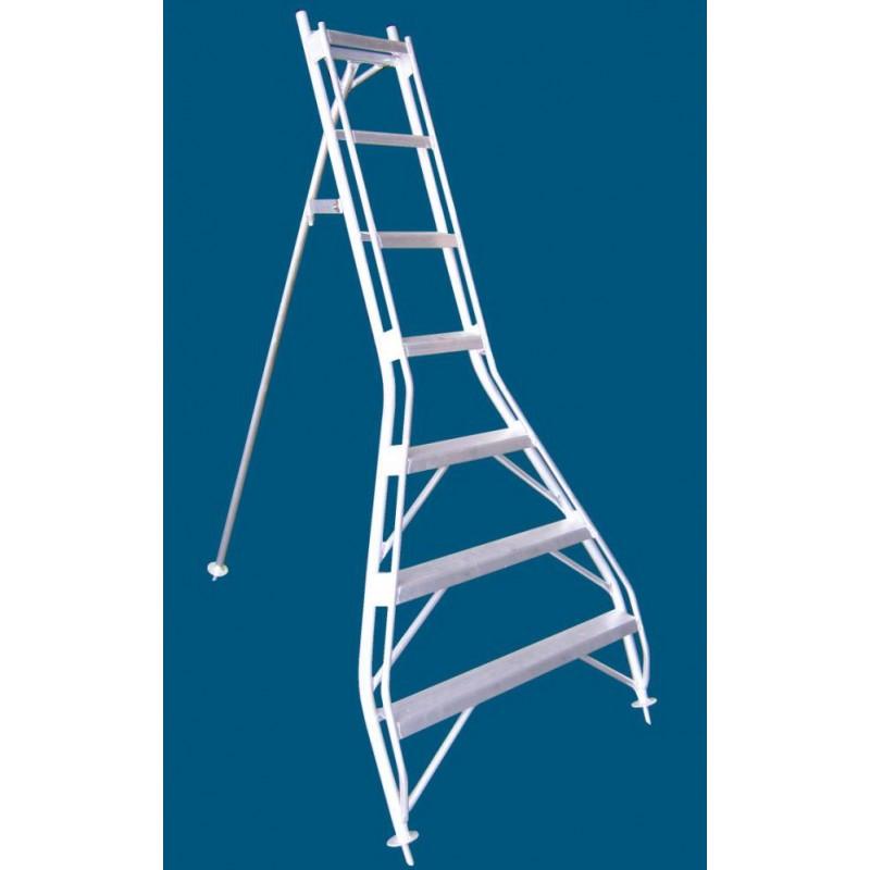 Allweld Aluminium Orchard Ladder 1.63m Flat Top image