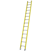 Fibreglass Single Ladders image